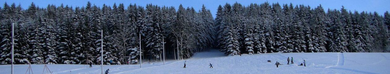 SV Tanne Thalheim e. V. – Abteilung SKI – Langlauf / Alpin